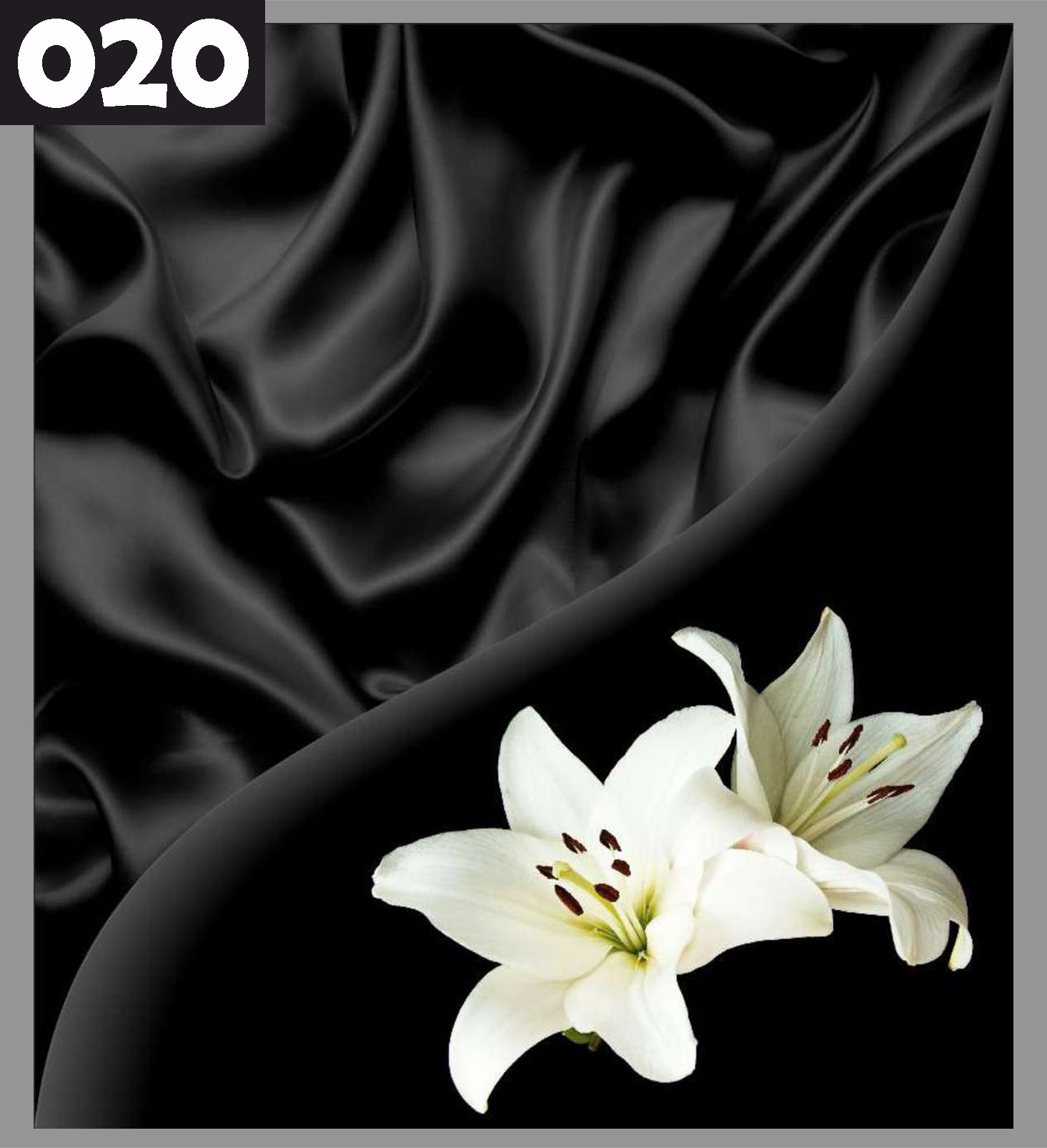 nd20-